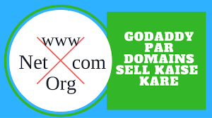 Domain Names Only Title How To Sell Domains Name On Godaddy In Hindi Youtube