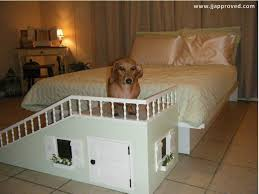 Elevated Dog Bed With Stairs Best Dog Ramp Ever Pet Stuff Pinterest Dog Ramp Dog And