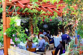hillcrest u2039 fig tree eatery