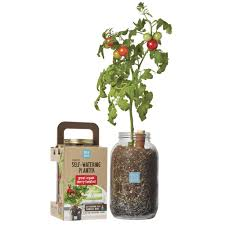 organic self watering planter u2013 back to the roots official site