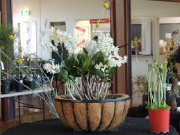 fertiliser for native plants australian plants society mitchell group untitled
