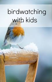 Backyard Bird Store Get Your Kids Involved In A Backyard Bird Hunt Babycenter Blog