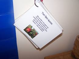thanksgiving story bracelet poem my montessori journey free downloads