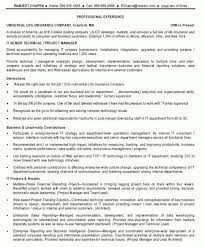 Project Manager Resume Tell The Company Or Organization Technical Program Manager Resume It Senior Technical Project Manager