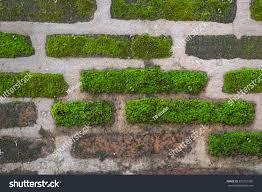 texture stone brick wall moss stock photo 329761358 shutterstock