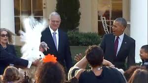 president obama s thanksgiving turkey pardon nov 23