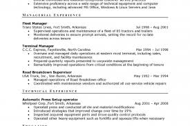 director level resume examples best american essays 2002 spartan