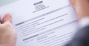 Resume Animal Shelter Essay Ethics Within Human Groups Buy Cheap by Improving Resume Templates Instathreds Co