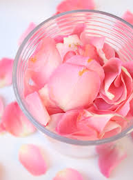 how to make rose water at home diary of a debutante