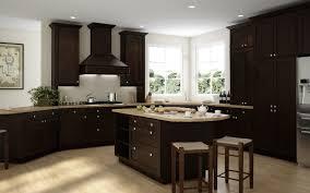 preassembled kitchen cabinets brazilian shaker pre assembled kitchen cabinets the rta store