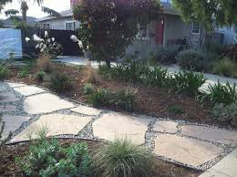california native drought tolerant plants mar vista green garden showcase january 2012