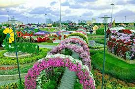 closing date of dubai miracle garden season 2016 rinnoo net website