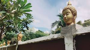 homeowner forced to remove decorative buddha heads after village