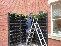 creative living wall planter ideas u2013 design your own vertical garden