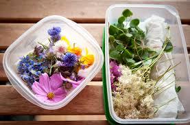 les fleurs comestibles pour une cuisine colorée et pleine de