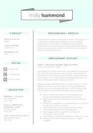 templates for cv com resume templates cv in tabular form format wisestep cv excellent cv