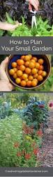 how to plan your small garden small vegetable gardens vegetable