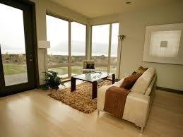 Living Room Wood Floor Ideas Fabulous Flooring Ideas For Living Room Charming Interior