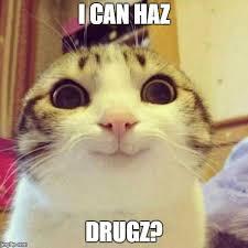 I Can Haz Meme Generator - smiling cat meme imgflip