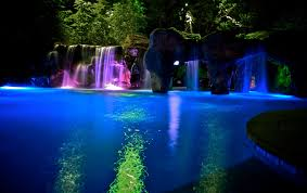 Beautiful Pool Backyards by Pool With Multi Colored Lighting That Alternates During The
