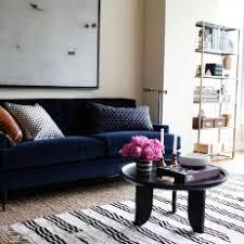 navy sofa living room photos hgtv