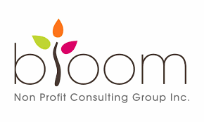bloom fundraising consulting bloom non profit consulting group inc