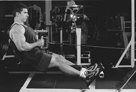 low pulley rows back bodybuilding exercise description