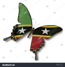 St Kitts Flag Federation Saint Kitts Nevis Flag On Stock Photo 103871273