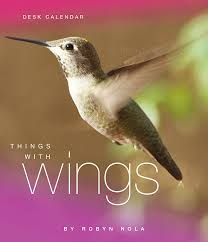 things with wings hummingbird dragonfly and butterfly calendar