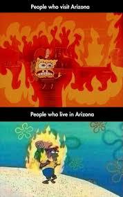 Arizona Memes - funny friday arizona s summer life palette