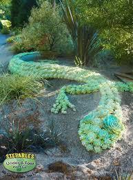 21 best succulent topiary images on pinterest garden art