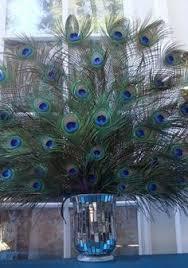 Peacock Centerpieces Peacock Deco Mesh Peacock Wreath Peacock Feathers Peacock