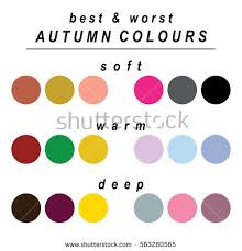 worst colors stock vector seasonal color analysis palette stock vector 563280565