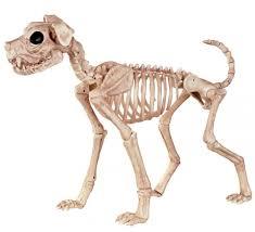 Halloween Pictures Skeletons Halloween Skeletons