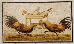 chickens and the cultural context of the gospels