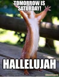 Saturday Meme - tomorrow is saturday meme squirrell 57915 memeshappen