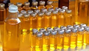 manfaat minyak lintah untuk kesehatan