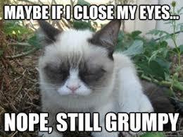 Create A Grumpy Cat Meme - 364 best grumpy cat images on pinterest grumpy cat funny
