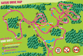 safari zone map don t miss a thing with our downloadable safari maps knowsley