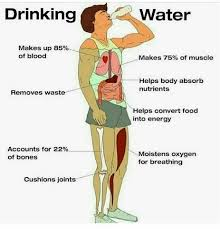 Water Meme - drinking water health meme holistic health journal