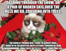 Grumpy Cat Snow Meme - grumpy cat snow meme 28 images i hate people grumpy cat meme