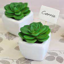 mini succulent potted plant favor eb2312 plant succulents pot