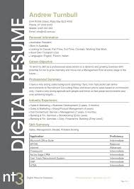 email resume template lukex co
