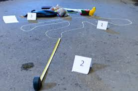 what is a forensic investigator with pictures