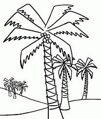 coconut tree trees coloring pages pinterest patterns