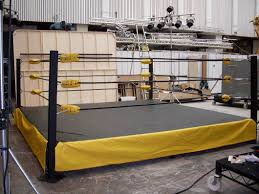 build a backyard wrestling ring outdoor furniture design and ideas