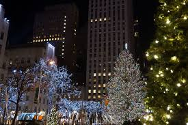 spruce from pennsylvania picked as rockefeller center