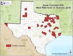 State Map Of Texas by 2016 Texas West Nile Virus Maps