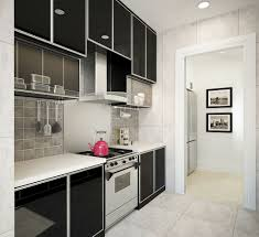 Ikea Kitchen Design For A Small Space Amazing Wet Kitchen Design Small Space 40 For Ikea Kitchen