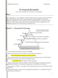 cracking the periodic table code worksheet answers 26 ecological pyramids s rennel food web ecology